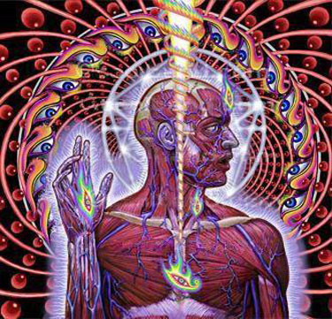 tool-lateralus1.jpg (375×361)